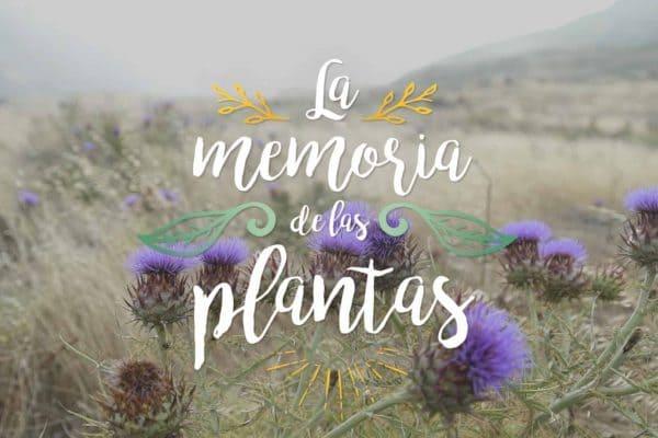 LAS MEMORIAS DE LAS PLANTAS